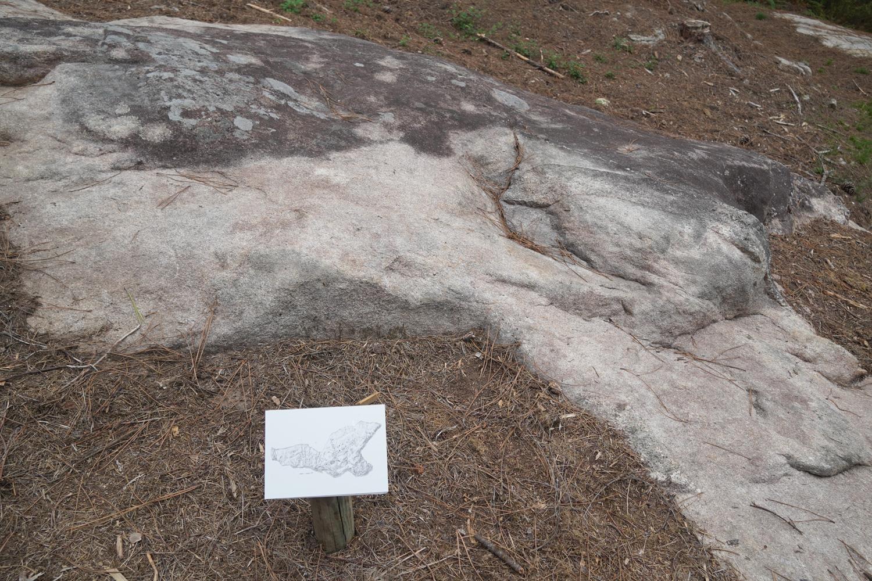 concello-de-tui-petroglifos-randufe (13)