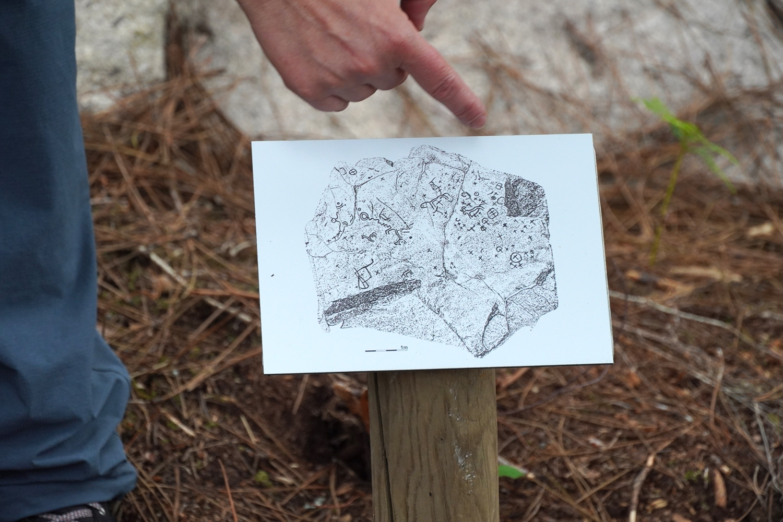 concello-de-tui-petroglifos-randufe (14)